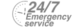 24/7 Emergency Service Pest Control in Belmont, South Sutton, SM2. Call Now! 020 8166 9746